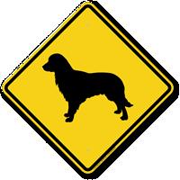 Golden Retriever Symbol Guard Dog Sign