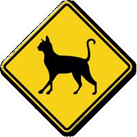 Cat Symbol Guard Cat Sign