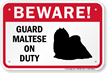 Beware Guard Maltese On Duty Sign