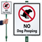 No Dog Pooping With Graphic Sign