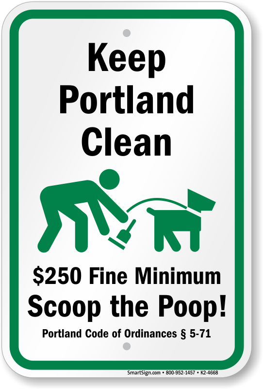how to clean dog poop from yard
