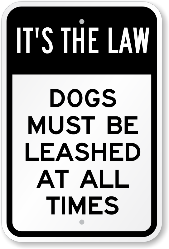 Image result for dogs must be on a leash clipart