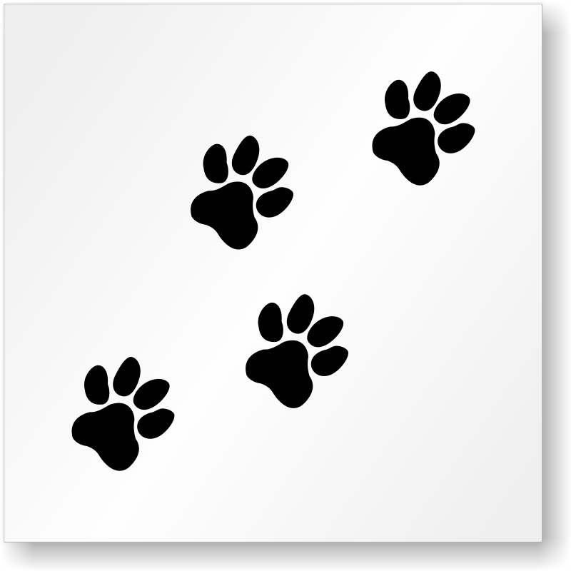 dog paw prints in - photo #43