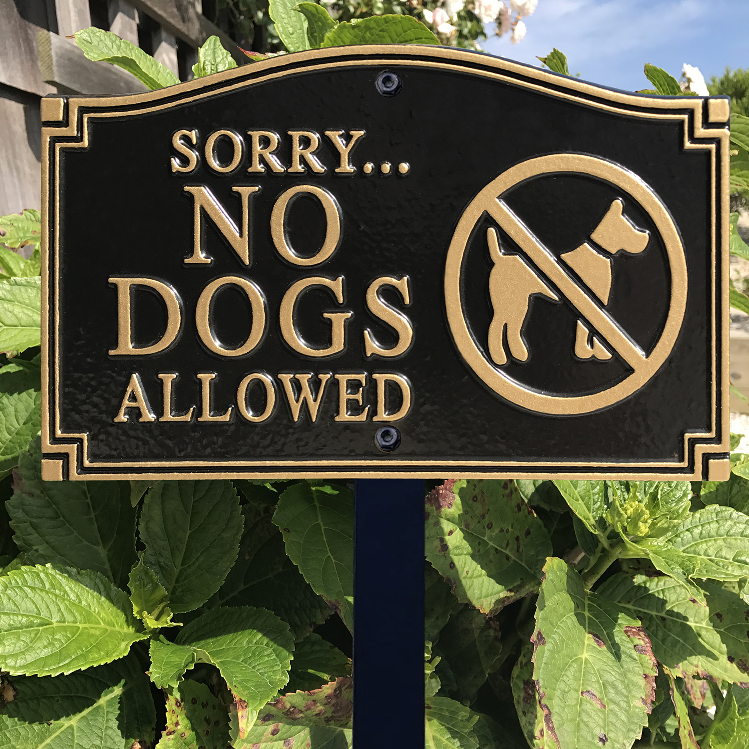 No Dogs Allowed Statement Lawn Plaque Sku Wp 0011